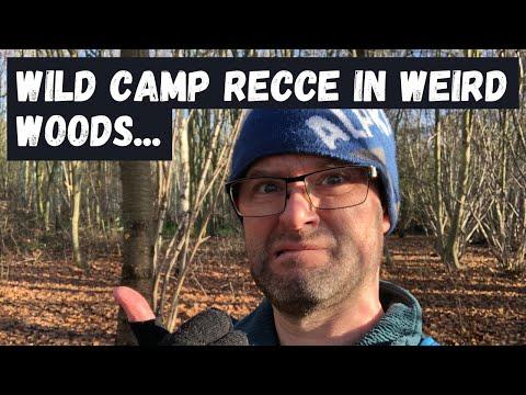 Wild Camp Recce in WEIRD London Woods
