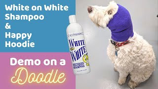 Bathing a Goldendoodle w/ Chris Christensen's White on White Shampoo and Trying the Happy Hoodie