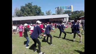 Gambar cover OM Sera - Pamer Bojo di Stadion Sriwedari Feat Joget Temon Holic