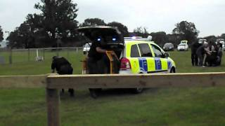 Thames Valley police open day- Dog section
