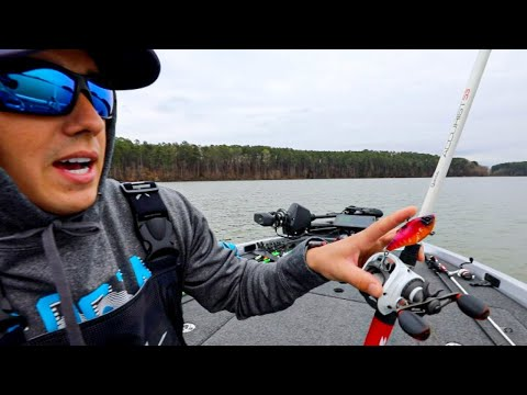 HUGE Bass In Ultra Shallow GRASS! ( Lipless Crankbait Fishing On Lake Guntersville )