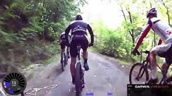 Team Bulls Mountain Bike Cycling Video for Indoor Training 60 Minute