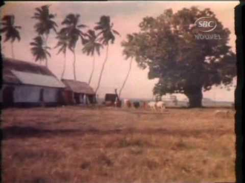SBC Seychelles:  New Book Island of Shame by David Vine  12-07-09
