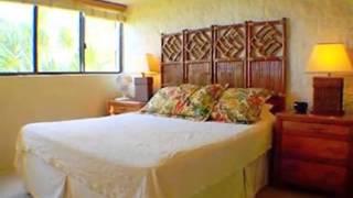 Homes for Sale - 250 Hauoli St Apt 213 Wailuku HI 96793 - Dave Seibert