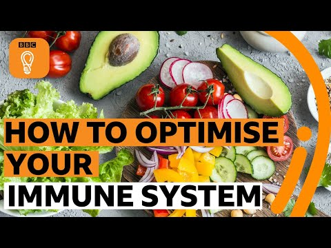 How what you eat affects your immune system | BBC Ideas