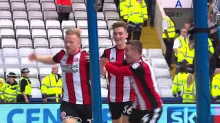 Owls 2-4 Blades - match action