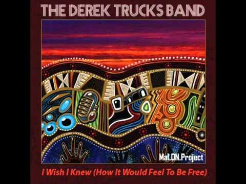 I Wish I Knew (How It Would Feel To Be Free) - The Derek Trucks Band