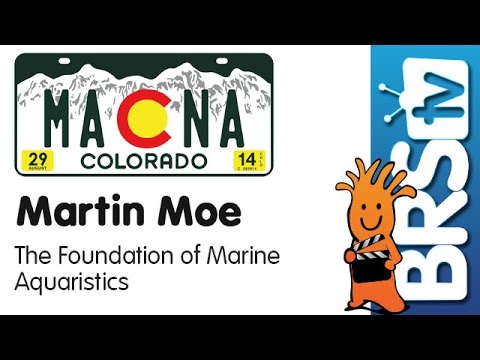 The Foundation of Marine Aquaristics by Martin Moe | MACNA 2014