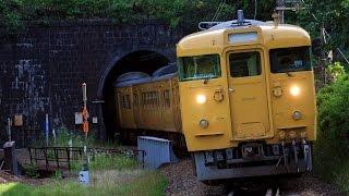 JR西日本 セノハチを行き交う 国鉄型近郊電車 115系濃黄色【Full HD】