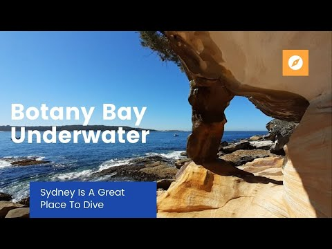 Botany Bay Underwater