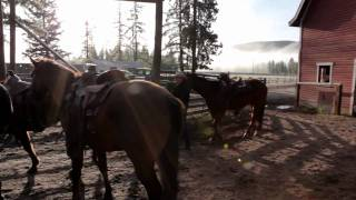 The Guest Ranch Experience - British Columbia, Canada