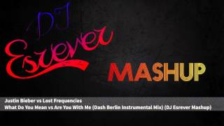 Justin Bieber vs Lost Frequencies & Dash Berlin - What Do You Mean vs Are You With Me