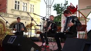 Crazy Accordion Trio - We Are Young live at CEPELIA Festival [Fun Music