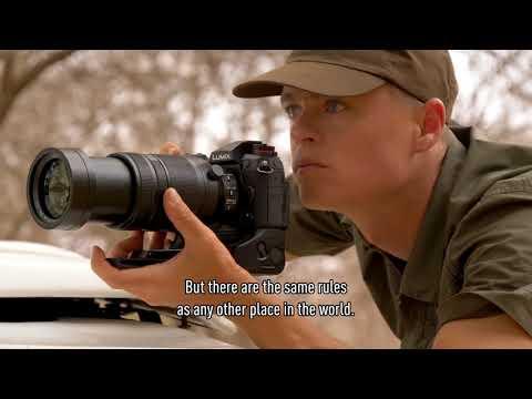 Panasonic LUMIX G9 Shooting Impression by Bence Máté