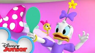 Daisy's Crazy Hair Day | Minnie's Bow-Toons | @Disney Junior