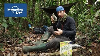 How to survive in the jungle - Lonely Planet Kids