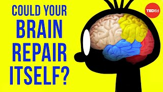Could Your Brain Repair Itself? - Ralitsa Petrova