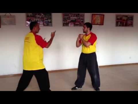 Seven Star Mantis Sifu Ortiz & Frank Marasco Qingdao 2013