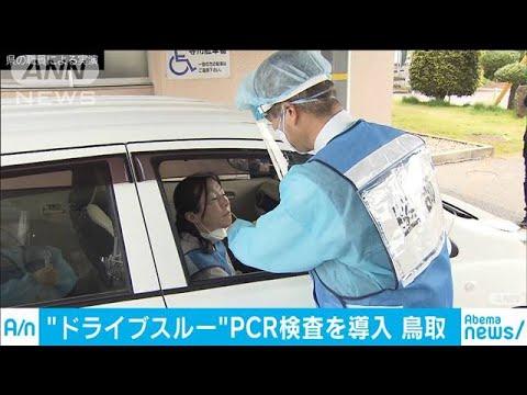 スルー pcr ドライブ