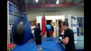 Blue Cattle Dog Boxing Gym Western Suburbs Sydney Nsw