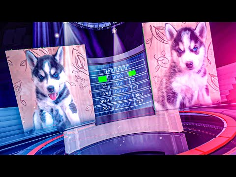 ЭПИЧНАЯ БИТВА ЩЕНКОВ НА ВЫЖИВАНИЕ!! (Хаски Бублик) Говорящая собака Mister Booble