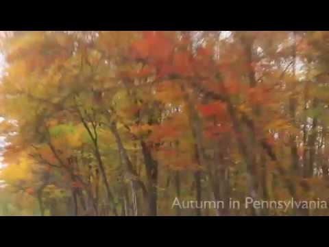 Fall Foliage in Pennsylvania - Driving On Highways