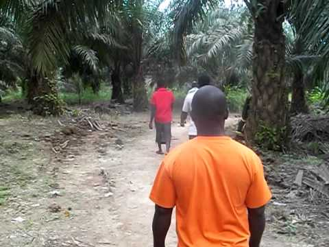 Ghana Gold Series - Bogoso Ghana West Africa - Walking to a Small Scale Gold Site