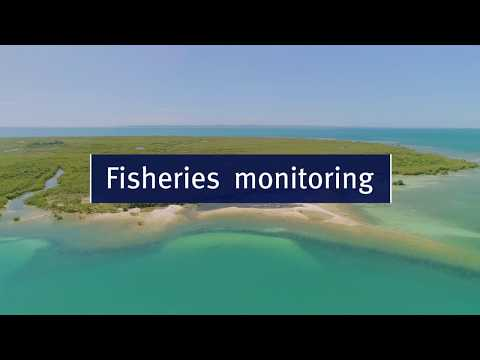 Fisheries Monitoring Film