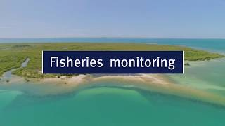 Fisheries monitoring film
