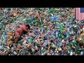 Plastic-eating enzyme created accidentally by scientists - TomoNews