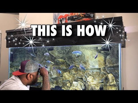 How I Get CRYSTAL CLEAR Fish Tank WATER, Clean Fish Tank Water