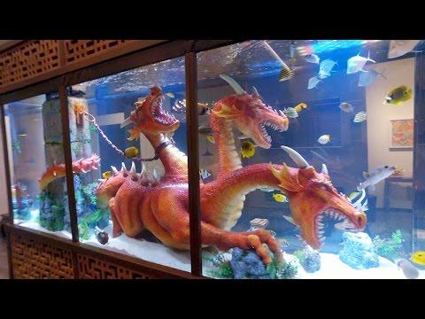 Steve Aoki's Dragon Tank
