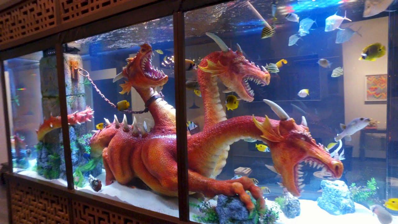 Steve Aoki S Dragon Tank Youtube
