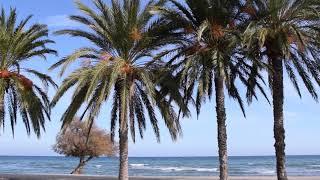 Blue-Sky-Huber in Spanien 2019 - Camping Roquetas