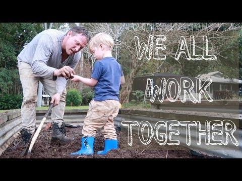 Working Together on The HOMESTEAD  (Backyard Farming and Sustainable Living)