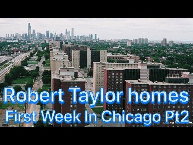 First Week Moving To Chicago Was Hell On Earth Pt2