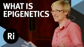 What is Epigenetics? with Nessa Carey