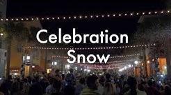 Celebration Florida Christmas Snowfall December 2013