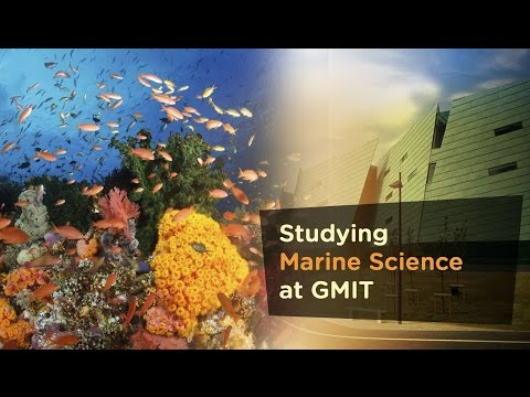 Studying Marine Science at GMIT