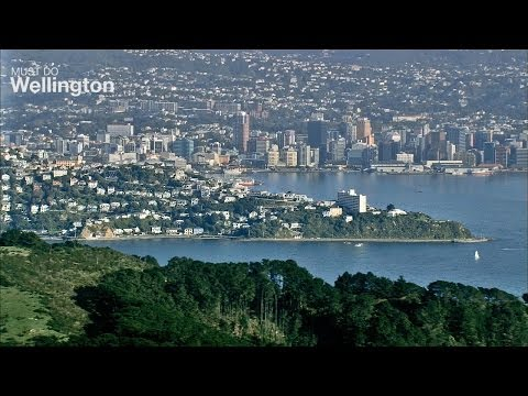 Must do Wellington - Things to do