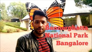 Visiting Bannerghatta National Park Bangalore | Butterfly Park | Zoo