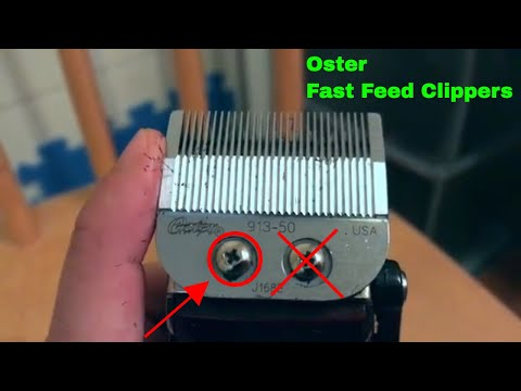 ✅  How To Use Oster Fast Feed Clippers Review
