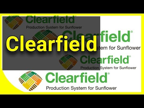 Clearfield система вирощування соняшника