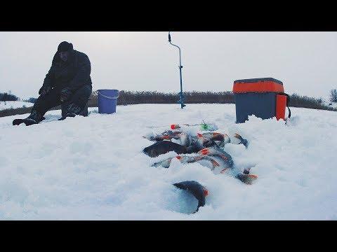 Ловля окуня на мормышку в Белгородской обл.