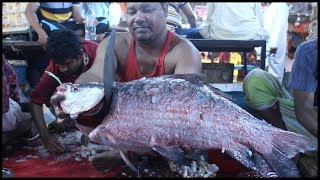 Fastest Fish Cutting By Fishmonger In Dhaka Fish Market | Big Carp Clean And Fillet Videos