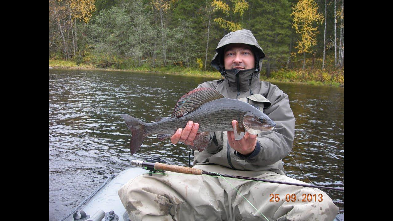 Рыбалка на хариуса видео