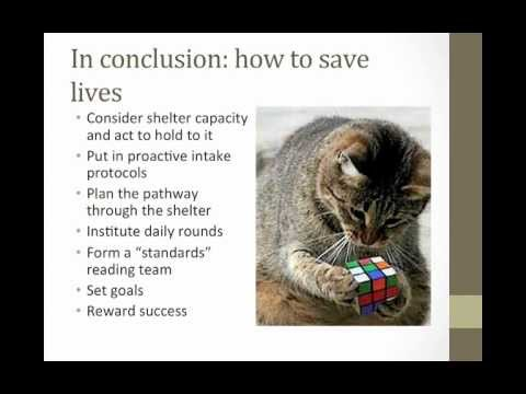 Life-saving Intake Protocols and Preventive Health Care Strategies