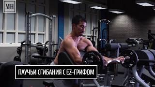 Качаем руки: 4 идеальных упражнения для верхней части тела