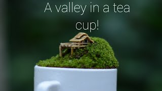 Tea cup miniature garden in Malayalam/ a valley in a tea cup/ By Botanical Woman