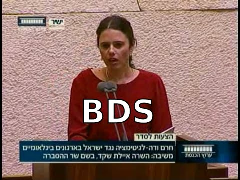 Knesset discussion on BDS, June 3rd 2015 [Hebrew. English later.]